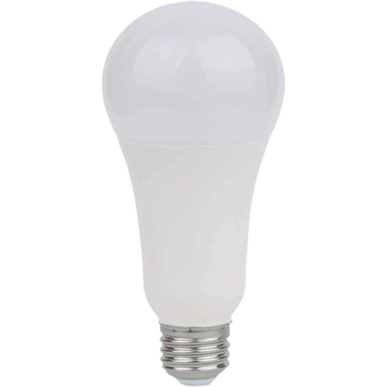 Satco Nuvo 50W/100W/150W Equivalent Warm White A21 Medium 3-Way LED Light Bulb Image 1