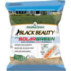 Jonathan Green Black Beauty 7 Lb. Texas Bluegrass Seed with Solargreen Image 1